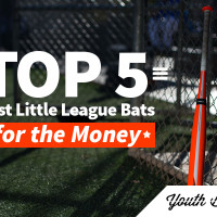 Article: Top 5 Best Little League Bats for the Money