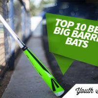 Big barrel bat reviews